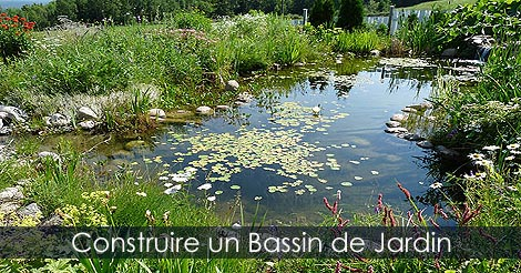 Guide de jardinage aquatique bassins cascades ruisseaux for Construction bassin de jardin
